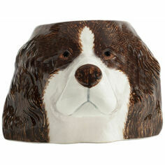 Springer Spaniel Face Egg Cup