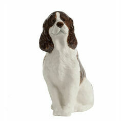Springer Spaniel Money Box