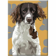 Spaniel Fridge Magnet