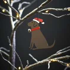 Sweet William Chocolate Labrador Christmas Decoration