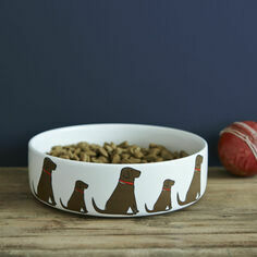 Sweet William Chocolate Labrador Dog Bowl