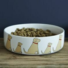 Sweet William Yellow Labrador Dog Bowl