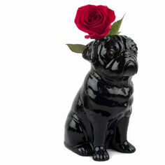 Quail Large Black Pug Flower Vase