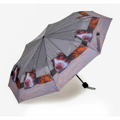 Country Matters I Spy Spaniel Folding Umbrella