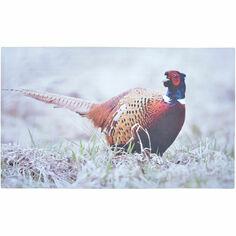 Pheasant Printed Doormat