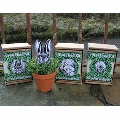 Cress Head Kit - Rabbit