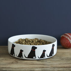 Sweet William Black Labrador Dog Bowl