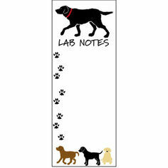 Lab Notes Magnetic List Noteboard
