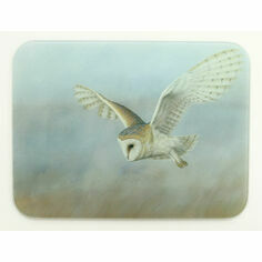 Barn Owl Work Top Saver