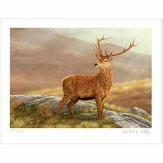 Limited Edition Print by Robert E Fuller - Red Stag