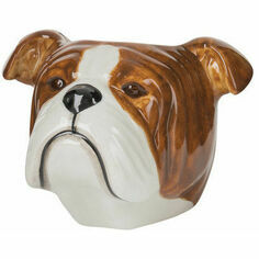 Quail Ceramics English Bulldog Face Egg Cup