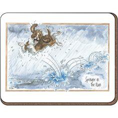 Alison's Animals 'Springer in Rain' Coaster