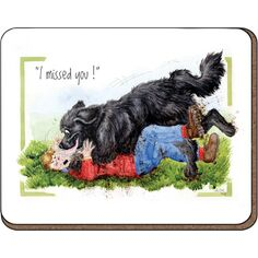 Alison\'s Animals \'Missed you\' Coaster