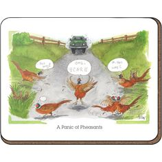 Alison's Animals 'Panic of pheasants' Coaster