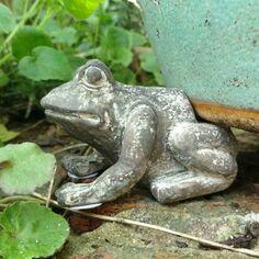 Frog Pot Risers