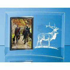 Red Deer Stag Curved Glass Photo Frame