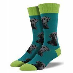 Pair of Men's Teal Labrador Socks