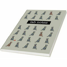 Lab Notes Notebook Grey