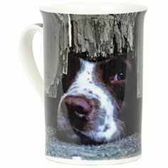 I Spy Spaniel Mug