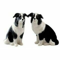 Quail Ceramics Border Collie Design Salt & Pepper Shaker Pots
