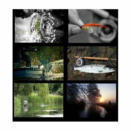Set of 6 Assorted Fishing Coasters